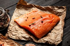 Salmon Fish Fillet royalty-vrije stock foto's