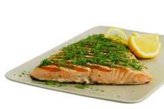 Salmon fish fillet grilled Stock Photography