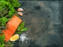 Salmon fish fillet with herbs and spices Stock Photo