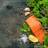 Salmon fish fillet with herbs spices. Seafood Stock Image