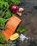 Salmon fish fillet with herbs and spices Seafood Stock Photos