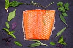 Salmon fish fillet Stock Image