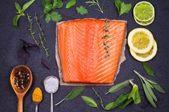 Salmon fish fillet Stock Photography