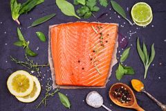 Salmon fish fillet Royalty Free Stock Photography
