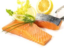 Salmon - Fish Fillet stock photography