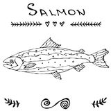 Salmon Fish for Fishing Club or Seafood Sushi Menu. Vector Illustration Isolated On a White Background Doodle Cartoon. Vector Illustration Isolated On a White Royalty Free Stock Images