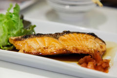 Salmon fish grilled with sauce Royalty Free Stock Images