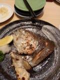 Salmon Fish Head Arkivfoto