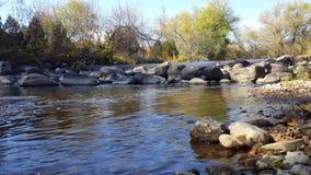 Salmon Fish Ladder Step in Rivier stock videobeelden