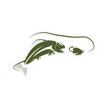 Salmon fish and lure vector design. Template Royalty Free Stock Photography