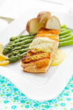 Salmon fish meal Royalty Free Stock Images