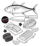 Salmon fish meat. Japan food doodle elements hand drawn style. Vector Illustrations Royalty Free Stock Photo