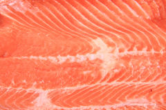 Salmon fish meat texture Royalty Free Stock Photography