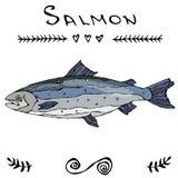 Salmon Fish pour pêcher le menu de sushi de club ou de fruits de mer Illustration de vecteur d'isolement sur une bande dessinée b Photographie stock libre de droits