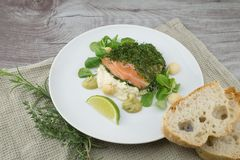 Salmon fish with salad Stock Images