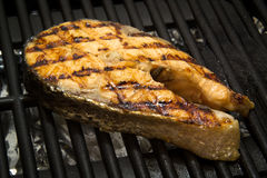 Salmon fish steak on the grill Stock Image