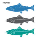 Salmon fish vector illustration. On white background Stock Photo