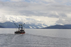 Salmon Fisher 2. June is salmon fishing season.  The waters of Prince Williams sound play host to many commercial salmon fishing boats Royalty Free Stock Photos