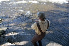 Salmon Fisherman. An angler struggles with a salmon in a river in Upstate New York Stock Photo