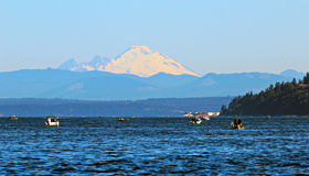 Salmon fishing stock images