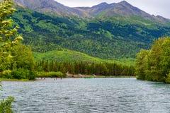 Salmon Fishing på den ryska floden i Alaska Royaltyfri Foto