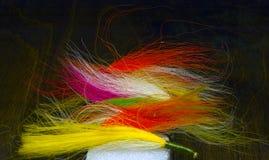 Salmon flies. Multicolor hand tied salmon flies on a styrofoam block Royalty Free Stock Image