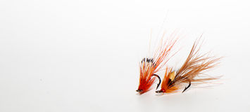Salmon flies Royalty Free Stock Images