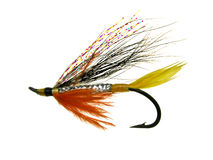 Salmon fly. For fly fishing with feathers and glitter tied on a hook Royalty Free Stock Image