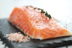 Salmon. Food. Delicious slice of salmon Royalty Free Stock Photography