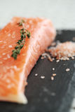 Salmon. Food. Delicious slice of salmon Royalty Free Stock Images
