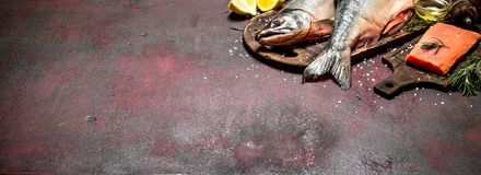 Salmon food. Fresh salmon with spices and herbs. On rustic background Stock Photography