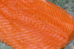 Salmon. Fresh Raw Salmon Red Fish. Fillet. 
