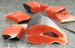 Salmon. Fresh Raw Salmon Red Fish Steak Royalty Free Stock Photos