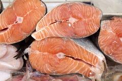 Salmon Stock Image