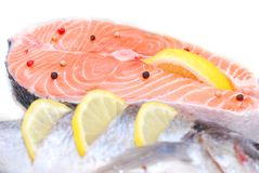 Salmon in fridge Royalty Free Stock Photo