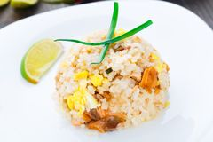 Salmon fried rice Stock Images