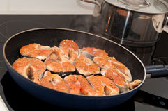 Salmon on frying pan Stock Images