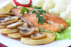Salmon with garnish. Salmon with vegetable garnish on white plate Stock Images