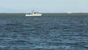 Salmon Gillnetter с сетью в Реке Fraser видеоматериал