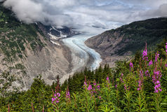 Salmon Glacier Stock Photography