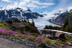 Salmon Glacier Stockfotografie