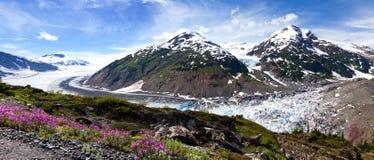 Salmon Glacier Lizenzfreie Stockfotos