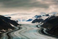 Salmon Glacier Stock Foto