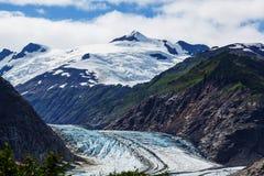 Salmon Glacier Royalty-vrije Stock Foto's