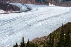 Salmon Glacier Royalty Free Stock Photography