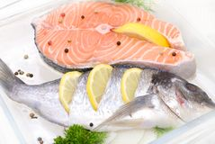 Salmon in a glass container Royalty Free Stock Photo