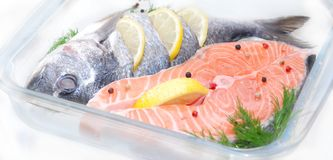 Salmon in a glass container Stock Photography