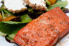 Salmon with goat cheese and beet salad Stock Image