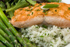 Salmon Gourmet Dinner. Gourmet Dinner featuring a salmon filet, rice pilaf, asparagus, and mixed greens Royalty Free Stock Photos