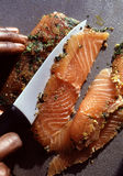 Salmon gravlax with maple syrup Stock Image